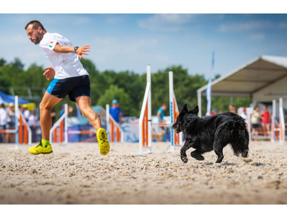 L'alimentazione del cane sportivo